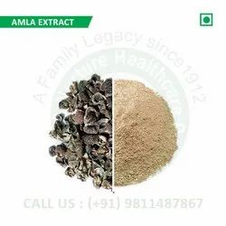Amla Extract (Emblica Officinalis, Phyllanthus Emblica, Emblic, Indian Gooseberry, Malacca Tree)
