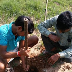 Soil Bearing Capacity Test Service