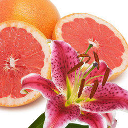 Citrus Cilantro Water Soluble Fragrance