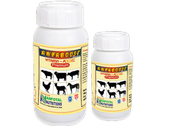 Pig Vitamin Supplement & Tonic (Vitamin AD3E Premium)