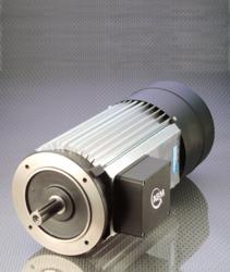 ABM Hoist Motor
