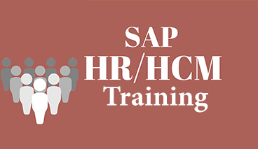 Sap Hr-hcm Training in Ameerpet, Hyderabad | ID: 14848734712