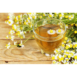 Chamomile Extracts 10:1