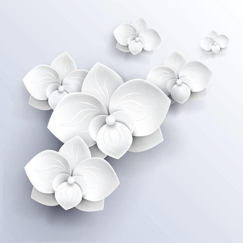 Paper with plastic coated white 3d flowers wallpaper rs 1000 roll paper with plastic coated white 3d flowers wallpaper mightylinksfo