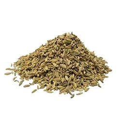 The Counts 12 Months Fennel Seeds, Pack Size: 10 Kg