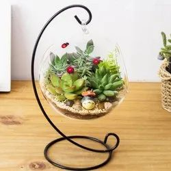 Glass Ball Terrarium with Stand