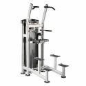 Chin Dip Machine, For Gym
