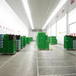 Controlled Atmosphere Cold Storage