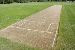 Cricket turf Pitch Expert Service