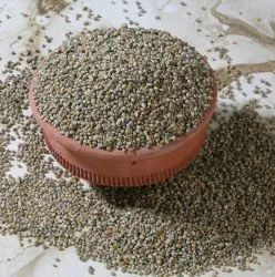 Indian Surendraray & Co Green Millet (Bajra)