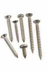 Din SS Self Tapping Screws