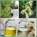 Henna Oil (Hina Oil)