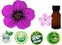 Essential Geranium Oil