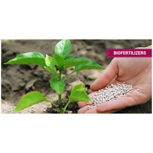 Bio Fertilizer, 2 Kg, 4 Kg, Pack Type: Jute Bag