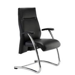 Visitor Leather Chair