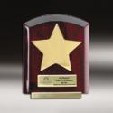 Star Shape Wooden Trophy
