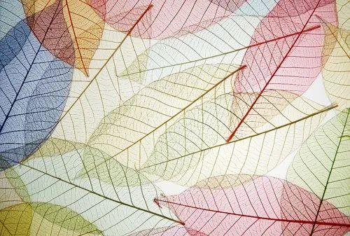 Abstract Wallpaper Patterns