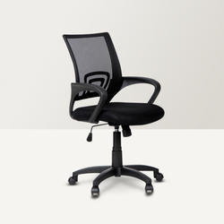 Back Support Chair