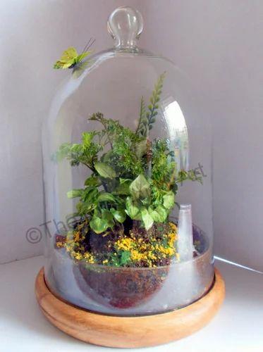 Bell Jar Glass Terrarium The Breathing Art Manufacturer In