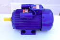 Single Phase Electric Foot Mount Motor, Power: <10 Kw