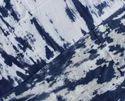 Shibori Print Cotton Fabric