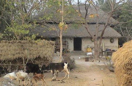 Bengali Villages Tour Packages, गांव टूर