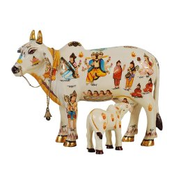 Kamdhnu Cow