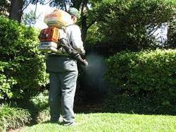 Backyard Mosquito Control Service