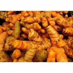 Organic Turmeric Fresh