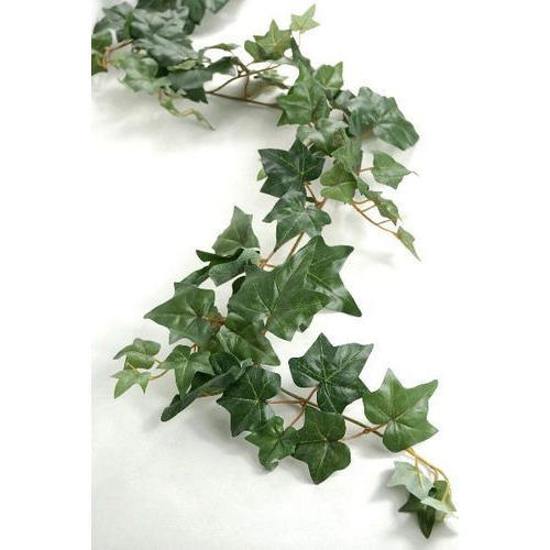artificial green creeper - view specifications & details of