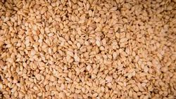 NATURAL SESAME SEEDS 99/1/1