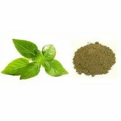 Ocimum Sanctum Basil Leaves Powder, Packaging Type: Whatsapp 00919176416331, Packaging Size: 10kg