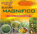 Elicura Magnifico Micronutrients (Gluconate Form)
