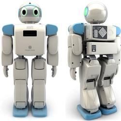 Intelligent Robot at Best Price in India