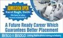 Britco Certified Digital Professional Course Service, Duration: 4 Months