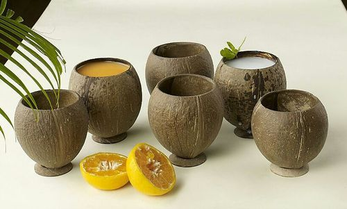Coconut Shell Natural Mug Big Coconut Shell Products Satellite