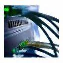 Network Maintenance Services