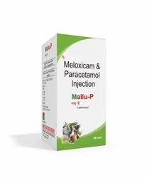 30 Ml Meloxicam And Paracetamol Injection