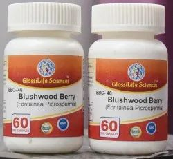 Blushwood Berry Extract 20:1 Capsules
