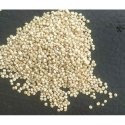 Indian Dried Quinoa Seeds, Packaging Size: Available In 25kg, 50 Kg, High In Protein