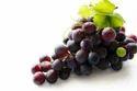 Resveratrol Ingredients