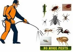 Commercial & Residential Pest Control Services, in Delhi Ncr