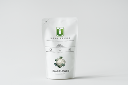 Hybrid White Cauliflower US( F11-4521) Seeds