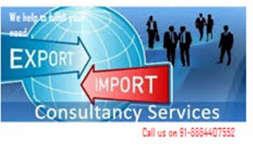 Import and Export Business Consultancy Service Providers in