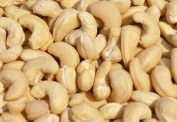 Processed Cashew Nut Kernel