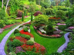 Landscaping Natural Garden Development Service, Coverage Area: <1000 Square Feet
