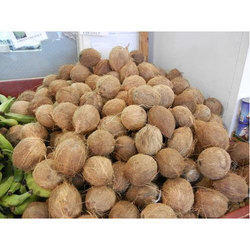 Matured Brown Coconut