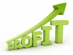 Productivity and Profitability Improvement Service, Analytical Service Frequency: 3 Months, Software Design