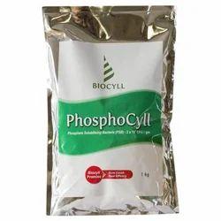 Biocyll Phosphocyll Phosphate Solubilizing Bacteria, 1kg