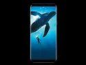 Samsung Galaxy S8 Plus Mobile Phones